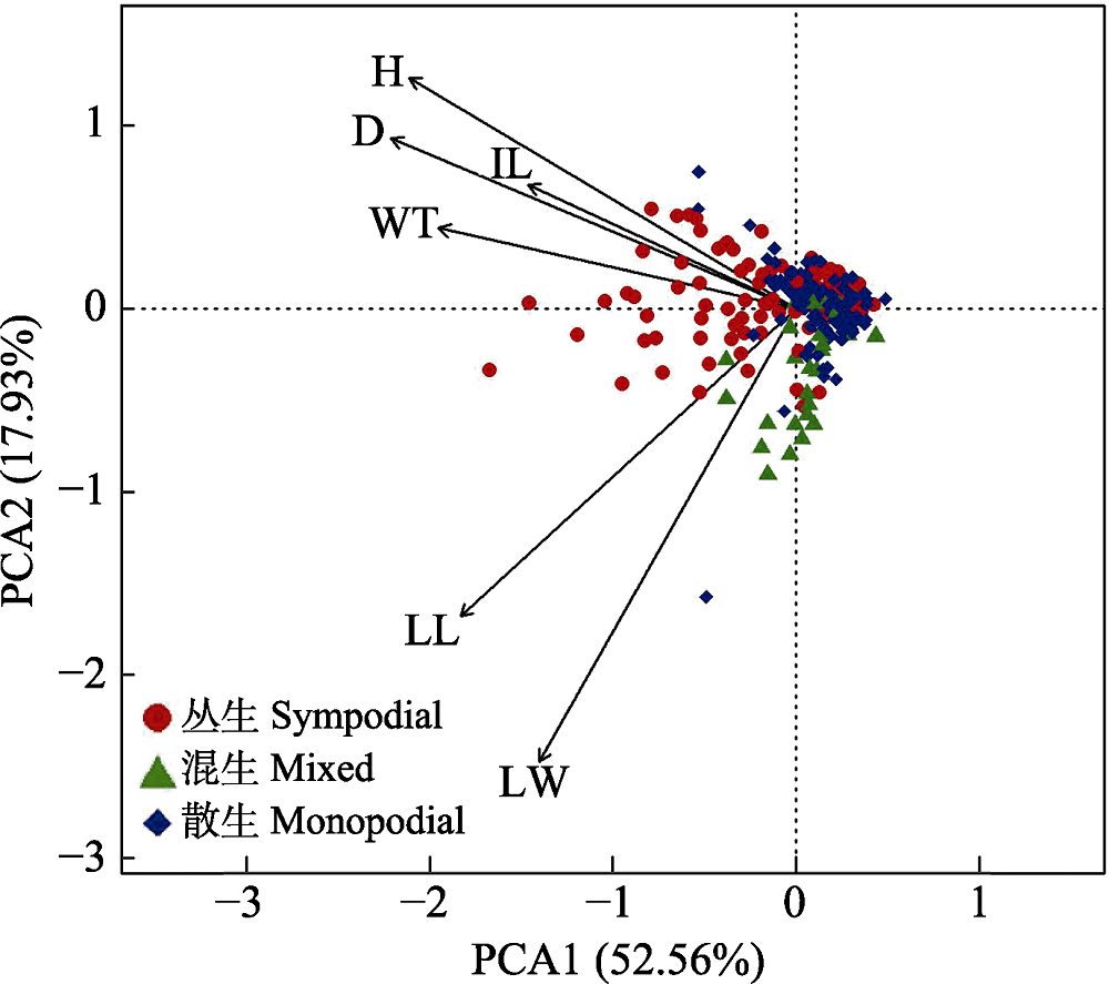 Variation in basic morphological and functional traits of